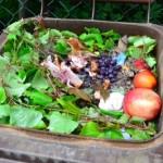 organic compost