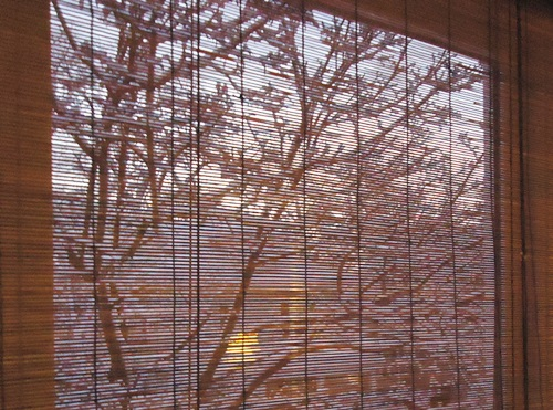 View_of_houses_in_snow_through_blinds
