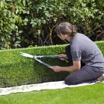 How to Keep Your Garden Looking Pristine in the Autumn