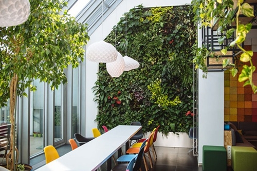 green office design